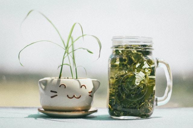 groene thee in fles tegen acne