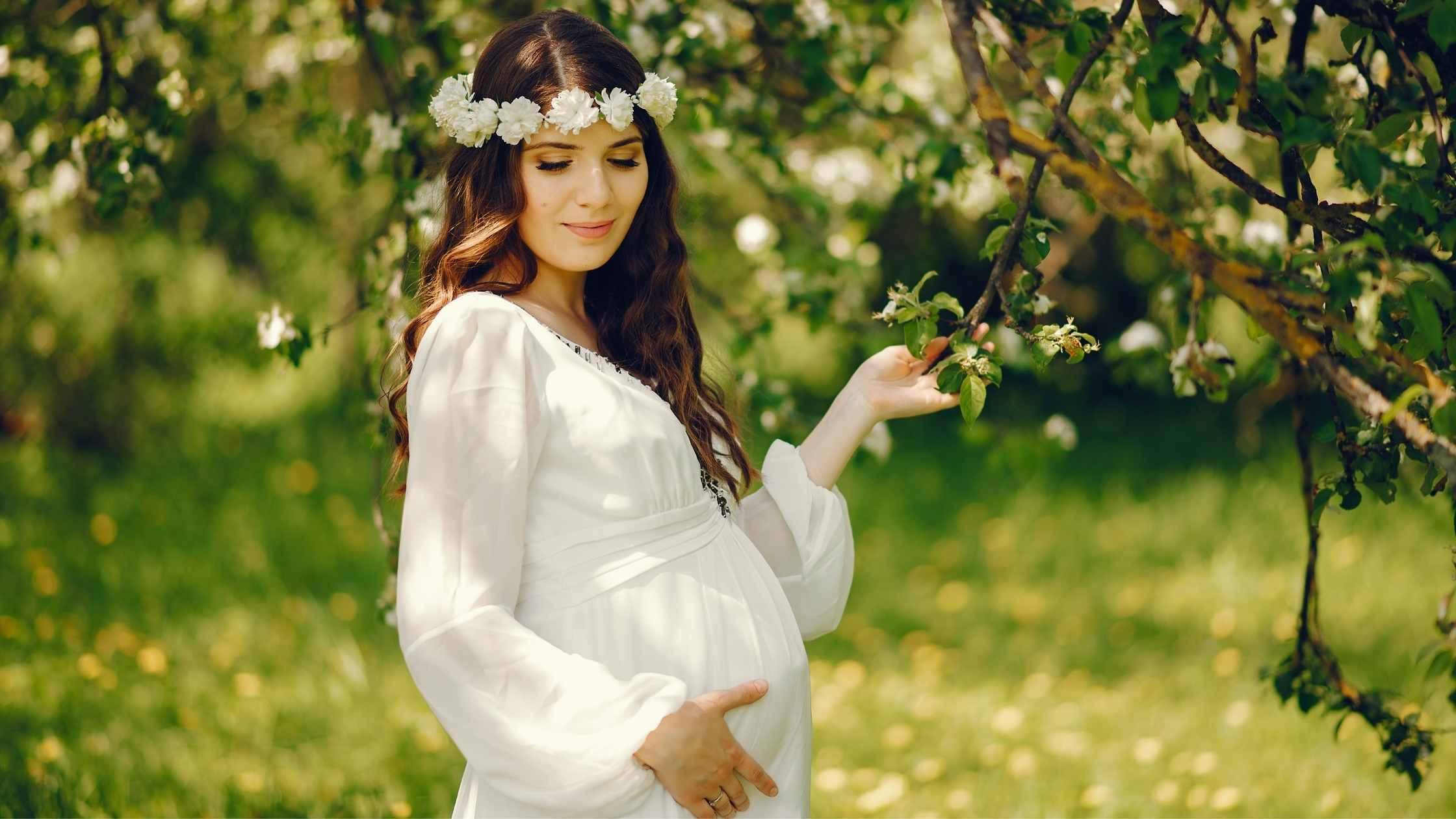ginseng zwangerschap