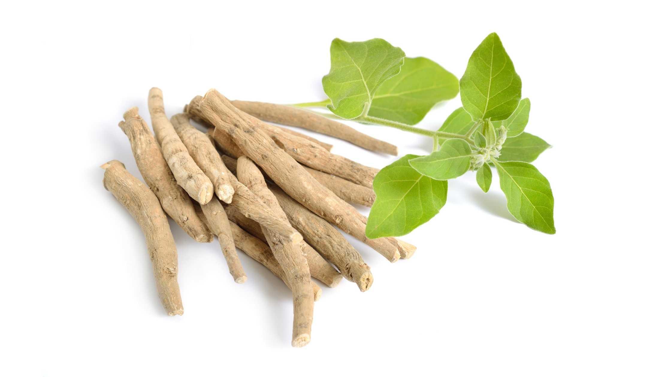 ashwagandha wortel
